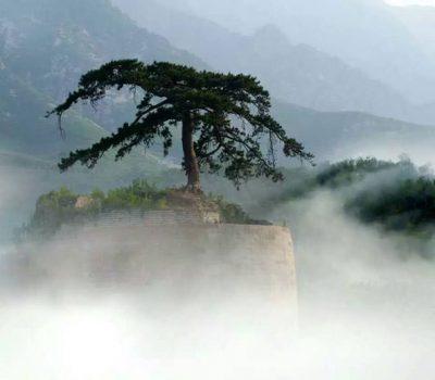 shanhaiguan-great-wall-10